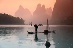 Pesca china del hombre con los pájaros de los cormoranes Fotos de archivo