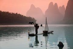 Pesca china del hombre con los pájaros de los cormoranes Imágenes de archivo libres de regalías