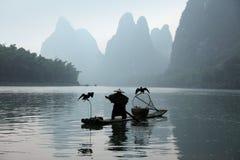 Pesca china del hombre con los pájaros de los cormoranes Foto de archivo