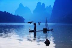 Pesca chinesa do homem com pássaros dos cormorões Foto de Stock Royalty Free