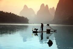 Pesca cinese dell'uomo con gli uccelli dei cormorani dentro Immagine Stock Libera da Diritti