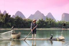 Pesca cinese dell'uomo con gli uccelli dei cormorani dentro Fotografie Stock Libere da Diritti