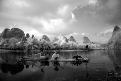 Pesca cinese dell'uomo con gli uccelli dei cormorani dentro Immagini Stock