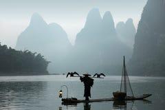 Pesca cinese dell'uomo con gli uccelli dei cormorants Immagine Stock Libera da Diritti