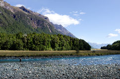 Pesca com mosca do pescador em Fiordland Fotografia de Stock Royalty Free