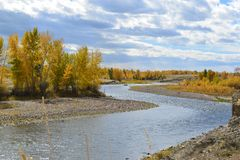Pesca con la mosca della barca di deriva su Montana& x27; grande fiume del foro di s Fotografia Stock