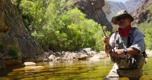 Pesca con mosca del pescador en el río almacen de video