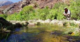 Pesca con mosca del pescador en el río almacen de metraje de vídeo
