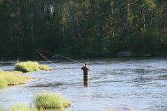 Pesca con mosca i Byskeälv, Norrland Suecia Fotografía de archivo libre de regalías