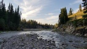 Pesca con mosca las montañas rocosas Foto de archivo