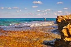 Pesca da manhã Fotografia de Stock