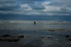 Pesca da rede de molde no Mar Negro Fotografia de Stock