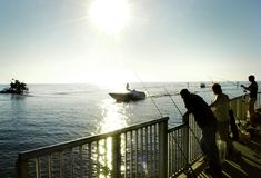 Pesca de Florida fotografia de stock