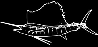 Pesca de juego del pez volador atlántico en fondo negro ilustración del vector