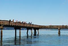 Pesca de la corrida de los salmones Fotografía de archivo