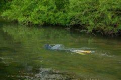 Pesca de la lanza en un río bajo Foto de archivo libre de regalías