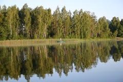 Pesca de la mañana imagenes de archivo