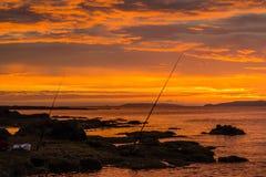 Pesca de la mañana Imágenes de archivo libres de regalías