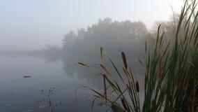 Pesca de la madrugada Fotos de archivo libres de regalías