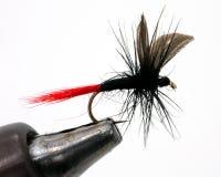 Pesca de la mosca en sostenedor fotografía de archivo