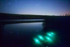 Pesca de la noche Foto de archivo libre de regalías
