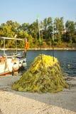 Pesca de la redada usada por los pescadores en el mar Fotografía de archivo libre de regalías