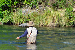 Pesca de mosca imagem de stock