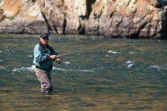 Pesca de mosca em Mongolia - peixe do timalo Fotos de Stock Royalty Free