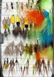 Pesca de moscas Imagen de archivo