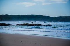 Pesca de resaca, una playa de la milla, puerto Stephens Foto de archivo