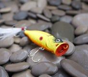 Pesca de señuelo Fotos de archivo libres de regalías
