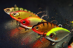 Pesca de señuelos Foto de archivo libre de regalías