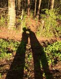 Pesca dei baci romantici dell'ombra della banca Fotografia Stock