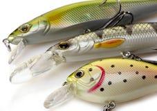 Pesca dei richiami Immagini Stock