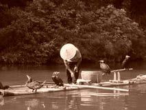 Pesca del cormorán en China Imagen de archivo libre de regalías
