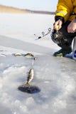 Pesca del ghiaccio Immagini Stock Libere da Diritti