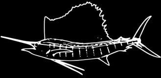 Pesca del gioco del pesce vela del Pacifico atlantico sul fondo nero illustrazione vettoriale