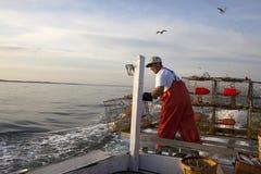 Pesca del granchio Fotografia Stock