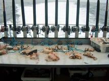 Pesca del halibut Fotografía de archivo