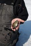 Pesca del hielo Foto de archivo