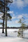 Pesca del hielo en el lago congelado Imagen de archivo