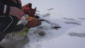 Pesca del pescador en agujero del hielo en el lago del invierno Buena captura en la pesca del invierno metrajes