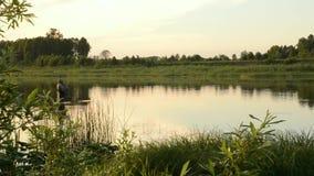 Pesca del pescatore in un fiume calmo di mattina Uomo in attrezzatura per la pesca che stending in un fiume e nei tiri una canna  video d archivio