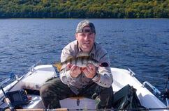 Pesca del pesce persico dalla barca Immagini Stock Libere da Diritti