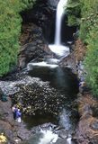 Pesca del río de la cascada Foto de archivo