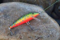 Pesca del richiamo fotografie stock libere da diritti