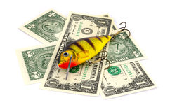 Pesca del richiamo con soldi Fotografia Stock Libera da Diritti