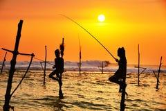 Pesca del trampolo Immagini Stock