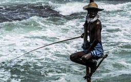 Pesca del trampolo Fotografia Stock