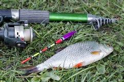 Pesca del verano en el lago con una caña de pescar Fotos de archivo